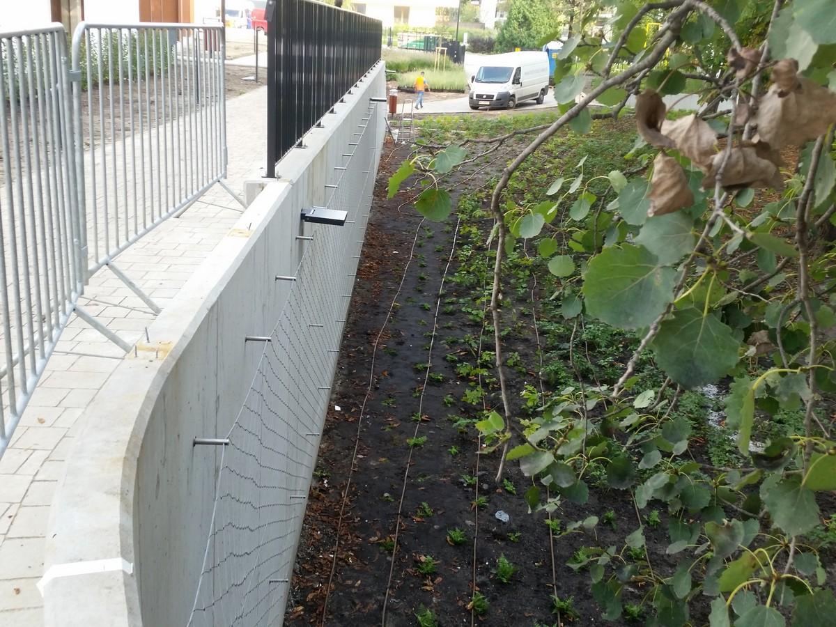 Siatka na ścianie do prowadzenia roślin