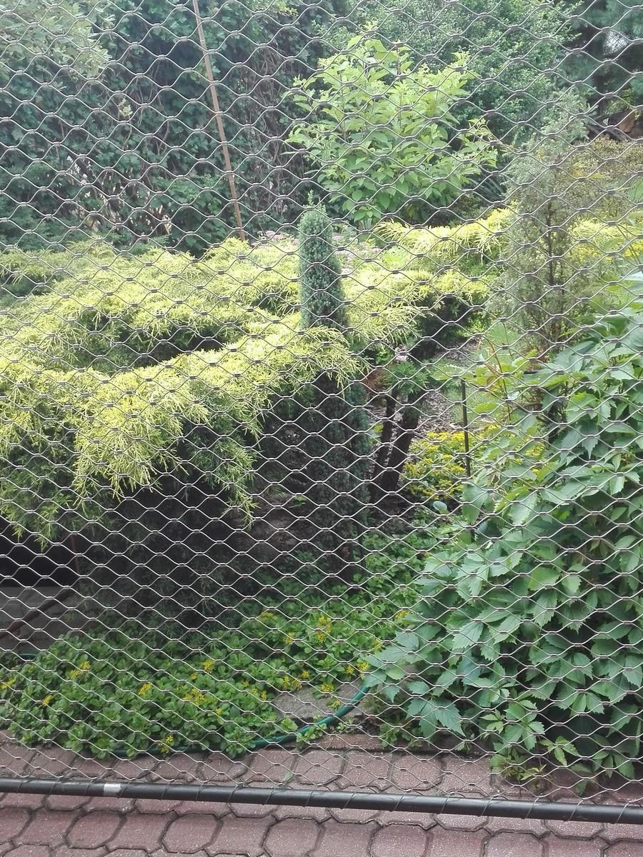 Siatka oddzielająca w ogrodzie
